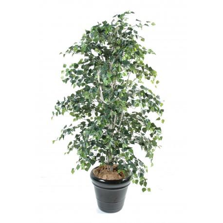Bouleau artificiel vert en pot 180 cm et 210 cm de hauteur