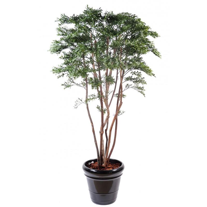 Saule am ricain plast de 175 cm de hauteur pour ext rieur for Livraison plantes exterieur