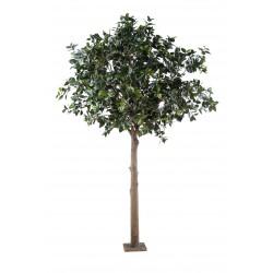 Camelia Japonica Tree Arbre Fruitier artificiel de 3 mètres de hauteur et 2m10 d'envergure