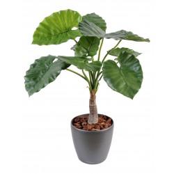 Alocasia artificiel Calidora 3 troncs