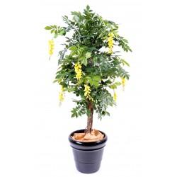 Glycine artificielle Multi Tree