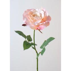 Rose Georgia en tige 70 cm de hauteur et 14 cm de diamètre Blanc