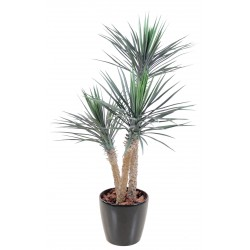 Yucca artificiel Rostrata 155