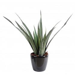 Aloe artificielle Ferox Plast