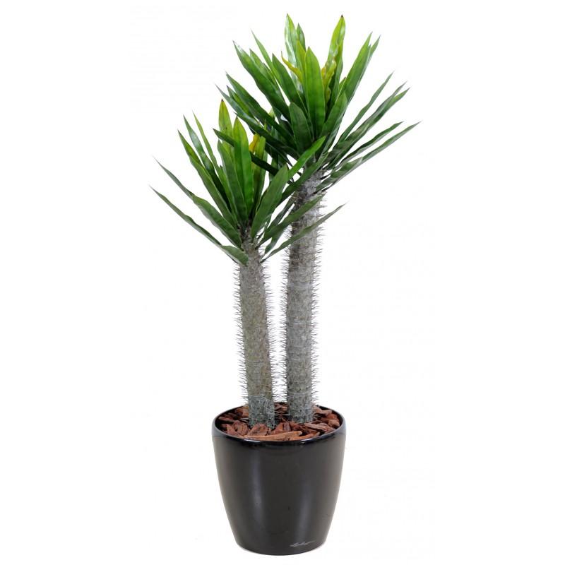 Pachypodium artificiel plast 2 troncs avec aiguilles pour for Plantes artificielles pour exterieur