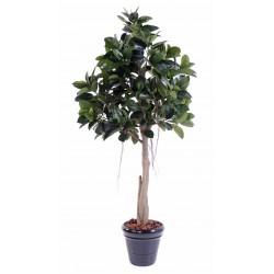 Rubber Plant artificiel Tree
