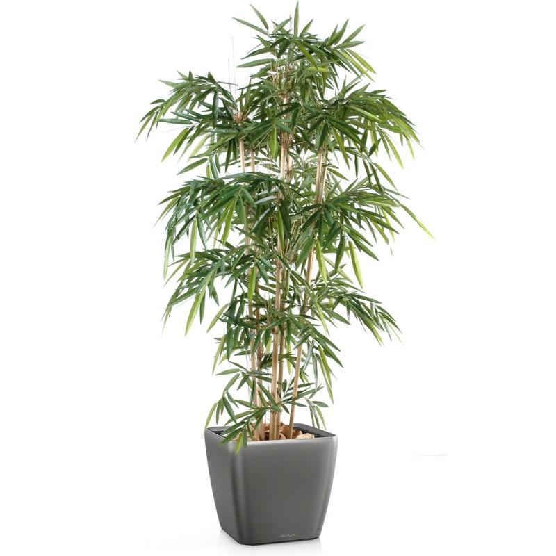 20170919175311 pot pour bambou terrasse for Bambou artificiel pour terrasse