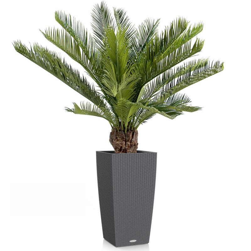 Cycas artificiel avec tronc 2 hauteurs disponibles 90 cm for Arbre artificiel pour terrasse