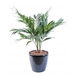 Palmier artificiel large choix de faux palmiers exotique for Palmier dans pot