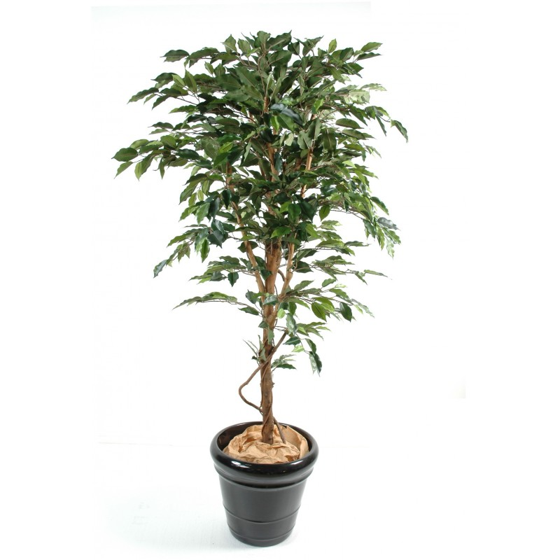 Ficus artificiel tronc simple grandes feuilles for Arbres artificiels interieur