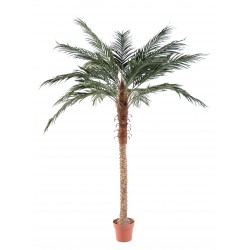 Palmier artificiel Phoenix Palm