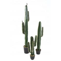 Cactus artificiel Cereus