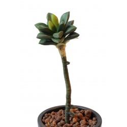 Succulente artificielle 35cm