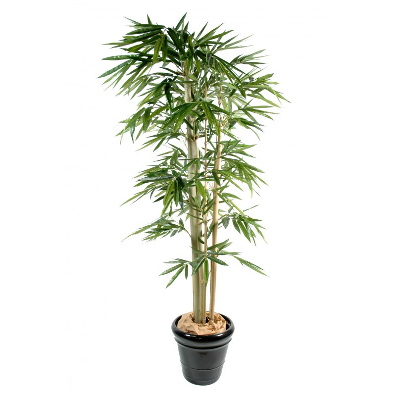 Bambou artificiel feuilles larges for Grande plantes artificielles