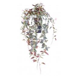 Tradescantia fleuri artificiel Chute * 516