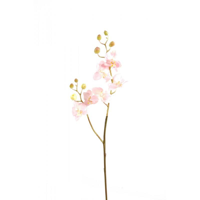 orchid e artificielle phalaenopsis m tige de 70 cm de hauteur. Black Bedroom Furniture Sets. Home Design Ideas