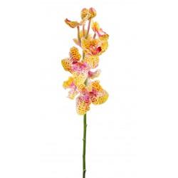 Orchidée artificielle Vanda Tige Fresh Touch