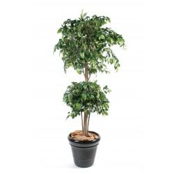 Ficus artificiel double boule