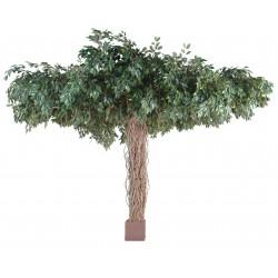 Ficus artificiel lianes umbrella