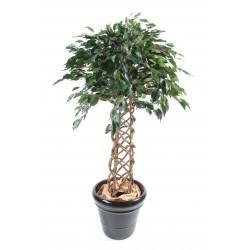 Ficus artificiel cage