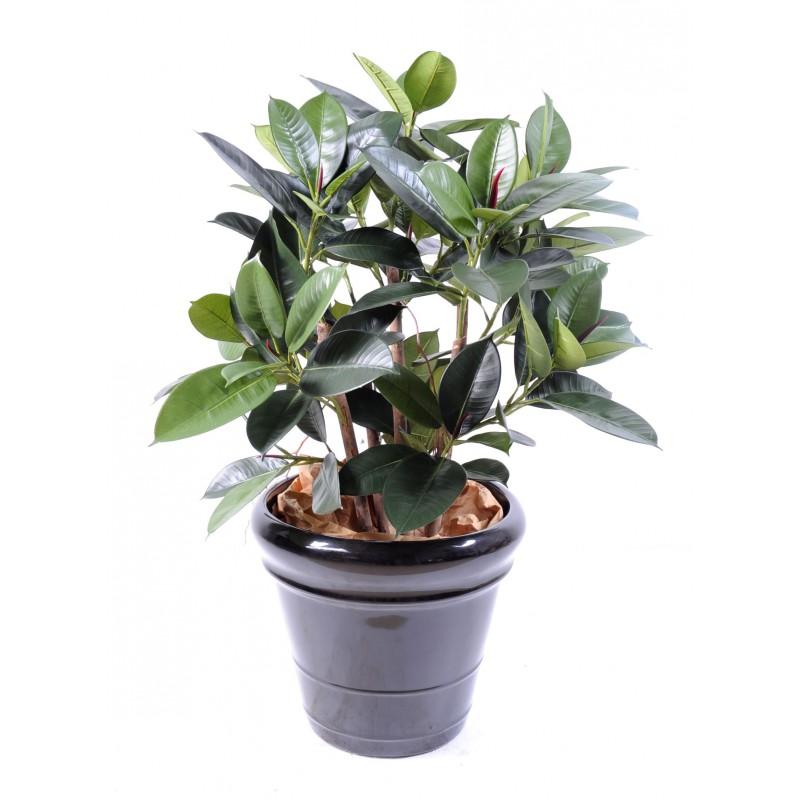 Ficus artificiel elastica buisson de 90 cm de haut et 50 for Buisson synthetique