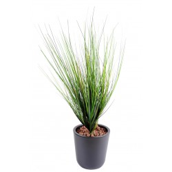 Onion artificiel Grass Piquet Large