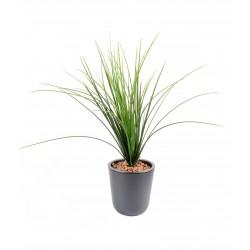 Herbe Onion Grass Plast 55 cm de hauteur pour extérieur
