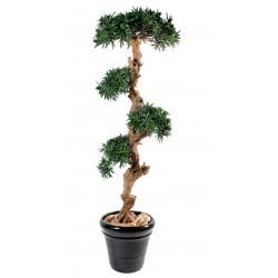 Podocarpus artificiel Nuage