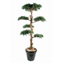 Podocarpus artificiel Nuage Large