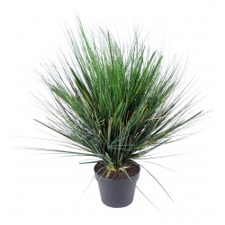 Onion Grass Artificiel Round