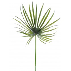Camerus artificiel Palm Plast