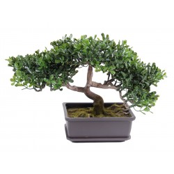 Bonsai artificiel Thé Mini 22 cm
