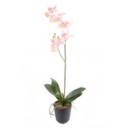 Orchidées artificielle Phalaenopsis L*12