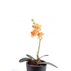 Orchidées artificielle Phalaenopsis S