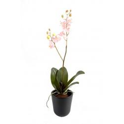Piquet d'Orchidée Phalaenopsis artificiel de 70 cm de hauteur avec des fleurs en tergal enduit 3 coloris