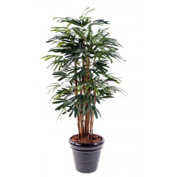 Palmier artificiel Raphis Lady Palm
