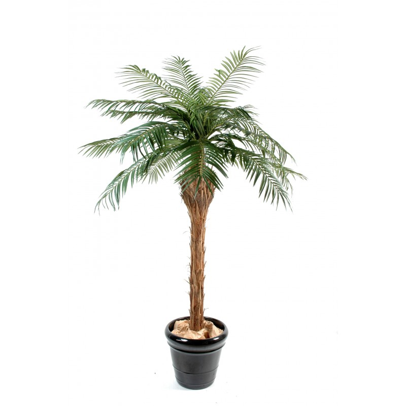 Palmier artificiel phoenix de 150 cm 450 cm de hauteur for Plante artificielle palmier