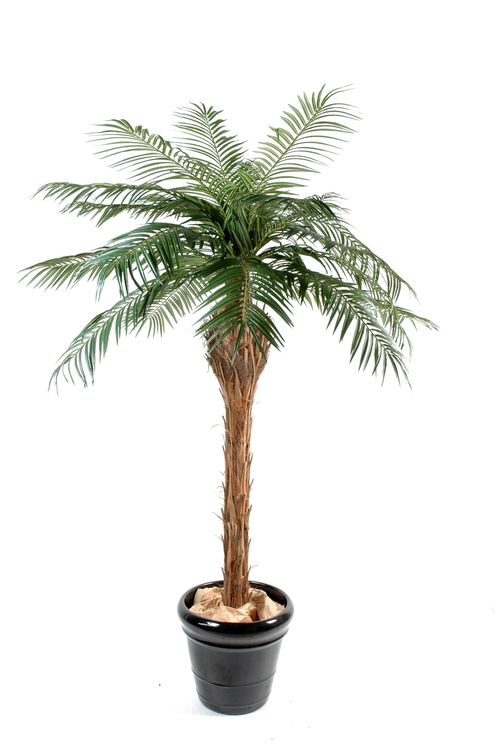 Palmier artificiel pas cher for Palmier artificiel interieur