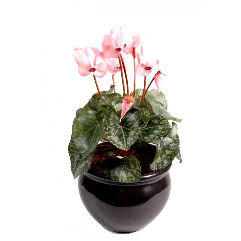 Cyclamen artificiel piquer de 25 cm de hauteur - Plantes fleuries artificielles pour exterieur ...