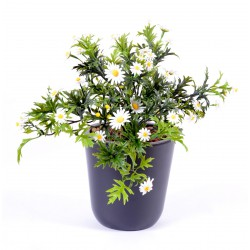 Marguerite artificielle Plast