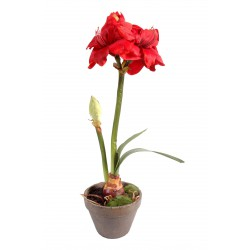 Amaryllis artificielle pot terre