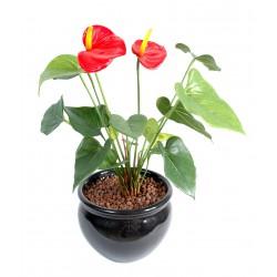Anthurium artificiel 45 cm